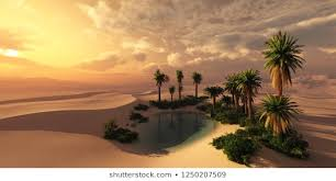 Oasis HD Stock Images | Shutterstock